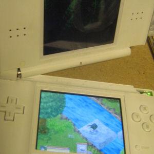 Nintendo DS foldaway!